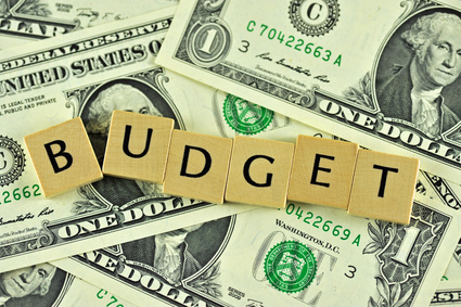 Helpful Tips to Organize Your 2014 Budget
